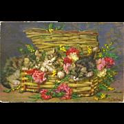 Basketful of Kittens Postcard Signed by D. Merlin