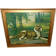 R. Atkinson Fox Pseudonym Musson Vintage Print of Saint Bernard Dog