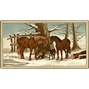 Advertising Trade Card 1880's Chicago & Erie Stove Company - Horses and Deer