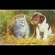 British Postcard of Puppy and Kitten