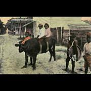 Vintage Black Americana Photo Postcard - Southern Transportation