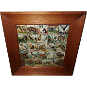 Folk Art ABC Child Lithograph Animal Alphabet Blocks A to Z