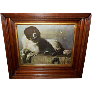 Sir Edwin Landseer Vintage Print of Newfoundland Dog Named Bob