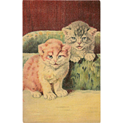 Vintage Postcard of Two Kittens or Cats