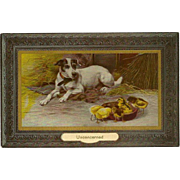 Dog and Chicks in Frame Vintage Postcard