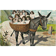 Vintage Fantasy Postcard of Babies in Basket on Donkey or Burro