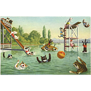 Max Kunzli Dressed Cats Postcard by Mainzer - Fun in the Water