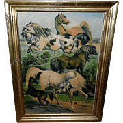 Large Color Lithograph of Horse Breeds - Lemon Gold Frame
