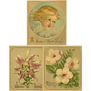 Three Small Chromolithographs - Cherub and Flowers