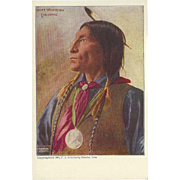 Cheyenne Chief Wolf Robe Undivided 1903 Postcard