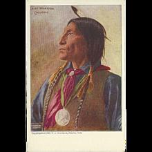 Cheyenne Chief Wolf Robe Undivided 1903 Postcard