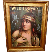 Indian Maiden Sheet Music in Gold Frame - Wild Flower