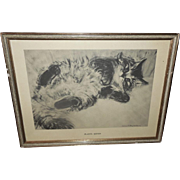 Clare Turlay Newberry Vintage Print of the Playful Kitten