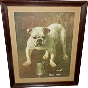 Vintage Print of Yale Mascot Bulldog