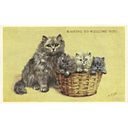 Mabel Gear Vintage Valentine and Sons Postcard of Mother Cat and Three Kittens in Basket