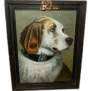 Chromolithograph Dated 1902 of English Fox Hound Dog in Embellished Frame