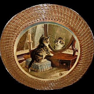 Kitten Looking in Mirror Mounted on Wood with Wicker