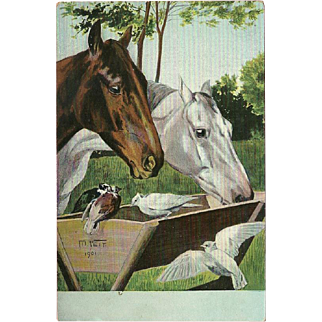 Moritz Veit Vintage Postcard of Two Horses with Birds