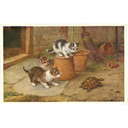 Edgar Hunt Vintage Postcard of Kittens and Turtle