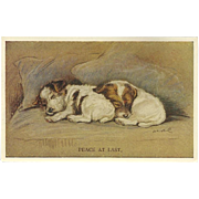 Lucy Dawson Vintage Postcard of Two Sleeping Dogs