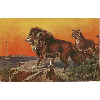 Vintage Postcard of Two Lions by F. Perlberg