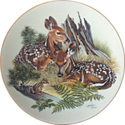 'White Tailed Fawns' by Richard Timm ©1982 First Edition 'Nature's Heritage' Plate Series