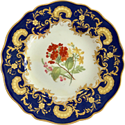 Antique W.T. Copeland, Spode Works, Cobalt Blue Gold Overlay Floral Center Dinner Plate 1850s