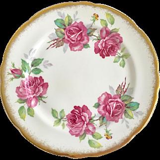 Royal Stafford Bone China England Berkeley Rose Salad Plate