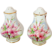 Royal Albert Blossom Time Pink Floral Scenic Salt and Pepper Shakers