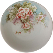 T&V Limoges France Early 1900s Hand Painted Flowers and Spiderwebs Plate