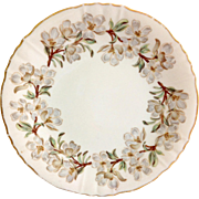 Syracuse China USA Orchard Dessert Plate