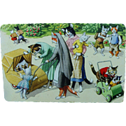 Mainzer Dressed Cats Postcard Belgium