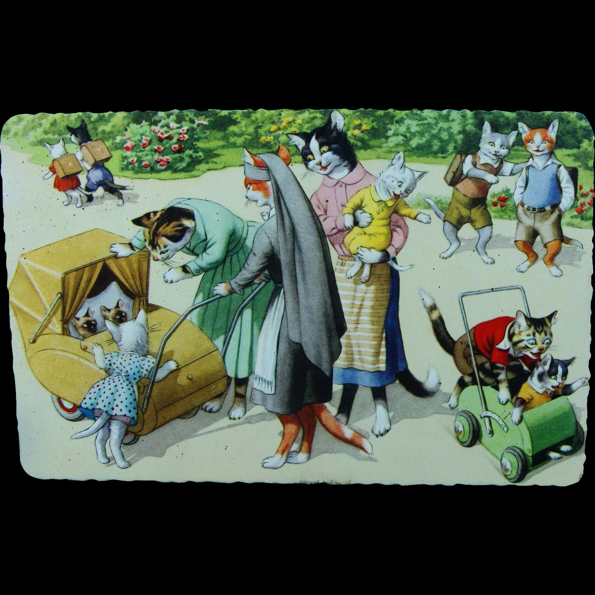 Mainzer Dressed Cats Postcard