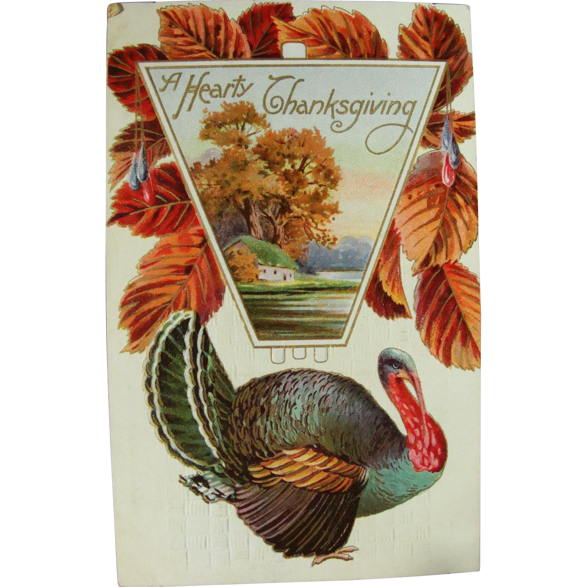 Post Card Turkey Day Thanksgiving 1911 San Francisco