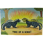 WWII Political Japanese Skunk Joke Post Card