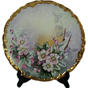 Limoges Handpainted Plate Apple Blossoms