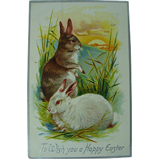 Tuck's Easter Post Card Easter Bunnies