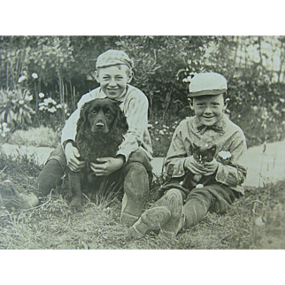 RPPC Two Boys With Dog And Cat Post Card Animals Pets