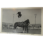 Buck Abbott Rodeo Rider Trick Rider Post Card
