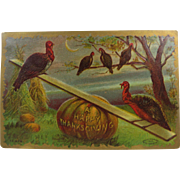 Thanksgiving Turkey Post Card Strange Eerie Morbid