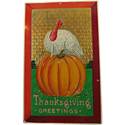 Glitzy Thanksgiving Turkey Pumpkin Postcard 1913