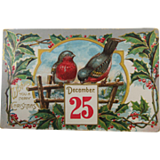 Cheery Holly Berries Robins December 25th 1909 Post Card