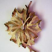 Trifari Crown Gold tone Leaf & Branch Brooch