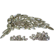 Delizza and Ester Julianna Brilliant Rhinestone Brooch
