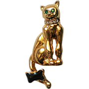 Sassy Cat or Kitten Pin