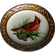 Avon Cardinal Bird Pin or Pendant labeled Crimson Crest / The Cardinal