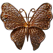 Signed Napier Golden Filigree Butterfly Pin