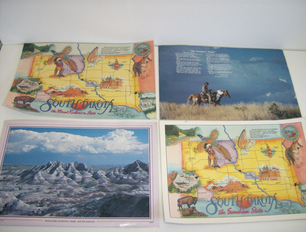 Souvenir South Dakota Plastic Placemats ~ Set of 4