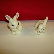 Hand Painted Bunny Rabbits