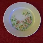 German Hand Painted Porcelain Plate
